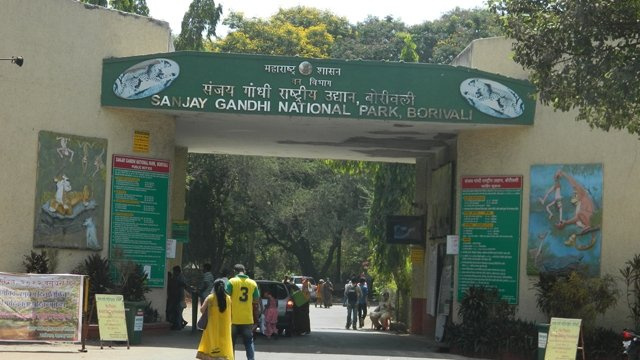 Valentine's day in Mumbai Sanjay Gandhi National Park-