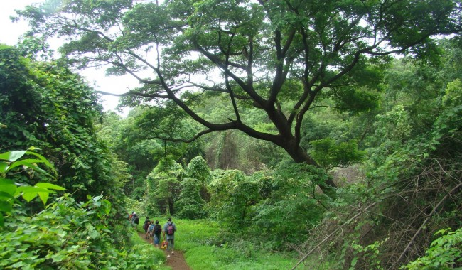 Haunted Places in Mumbai - Sanjay Gandhi National Park